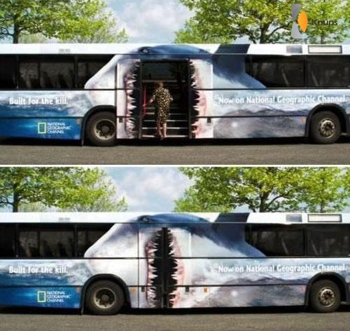 enge bus deuren