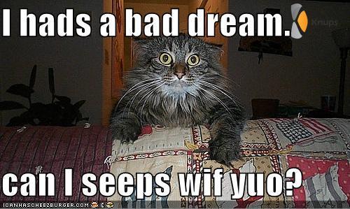 enge droom, mag ik bij jou slapen?