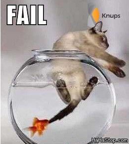 aangevallen door een vis