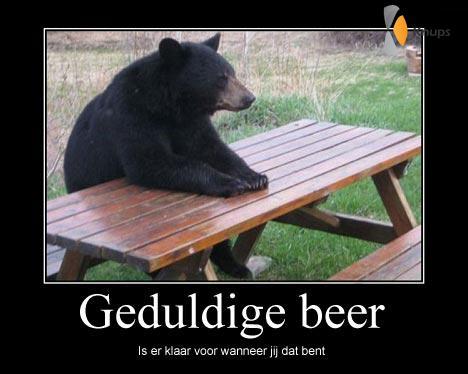 geduldige beer