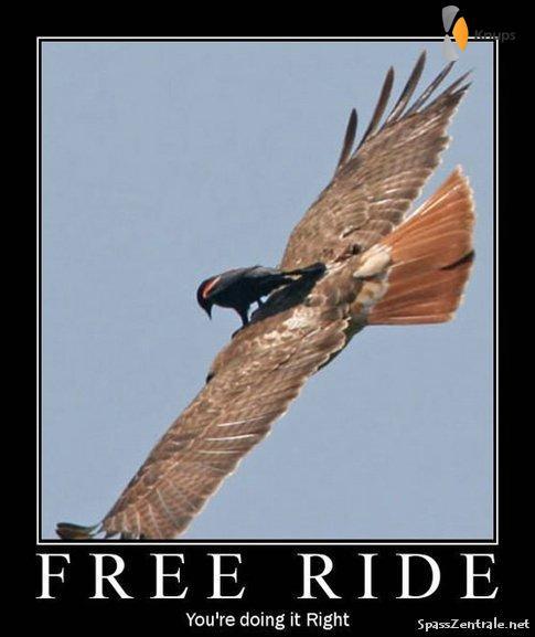 gratis ritje